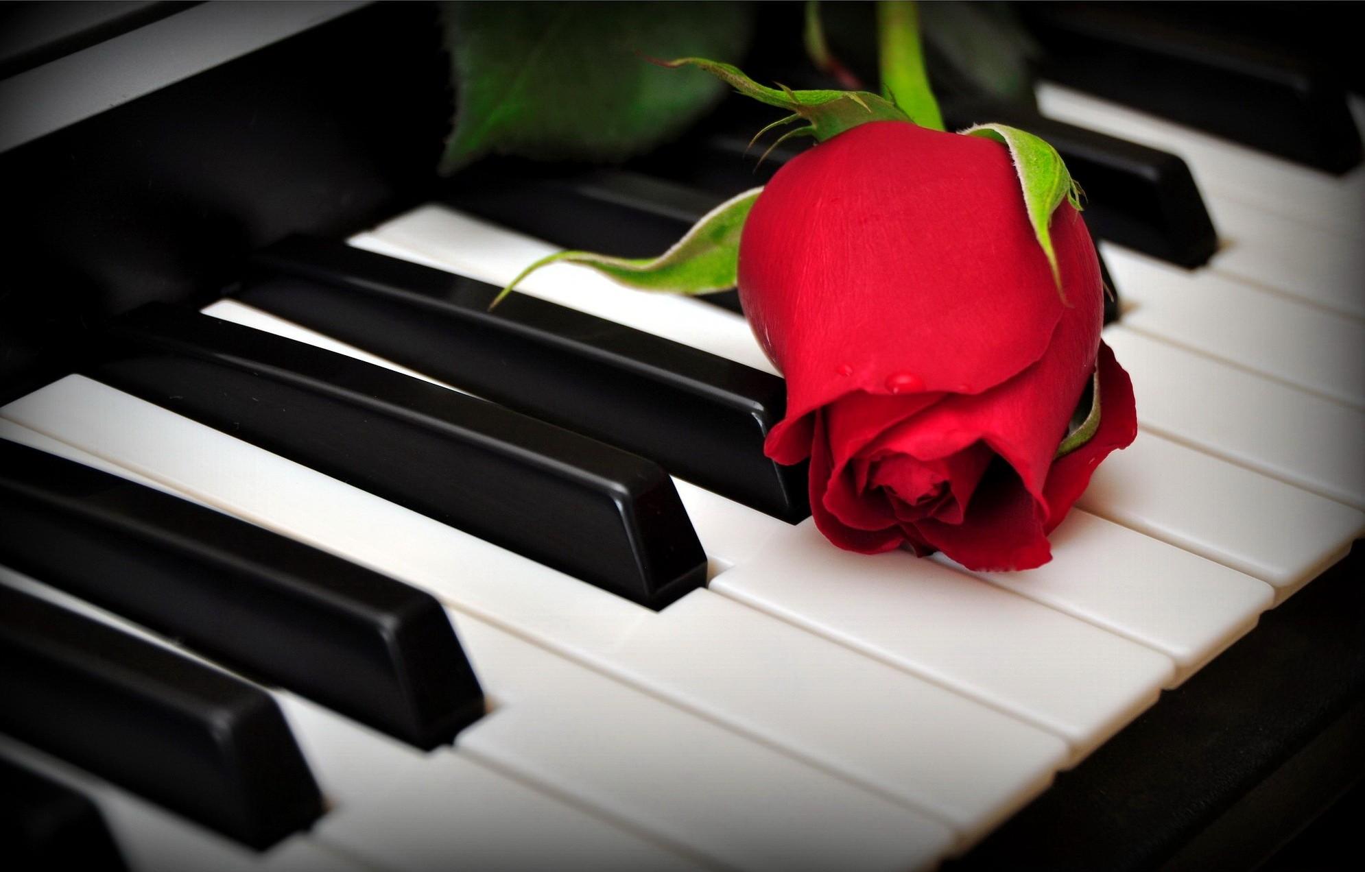 Фразы, которые будут звучать для Вашего мужчины музыкой