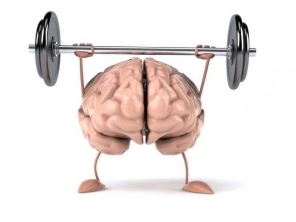 Несколько фактов о том, как работает наш мозг