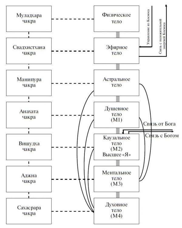 Секреты женской биолокации. 1.Введение. Схема тел. Физическое тело